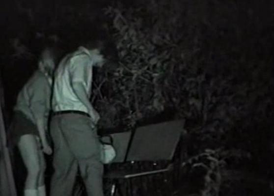 Ночью на улице секс
